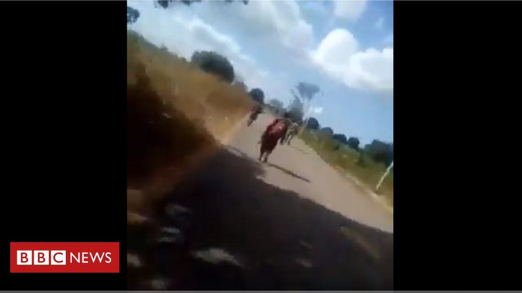 Mozambique video of killing fake, says defence minister