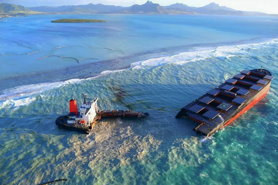 No oil damage confirmed at Ramsar sites in Mauritius: experts