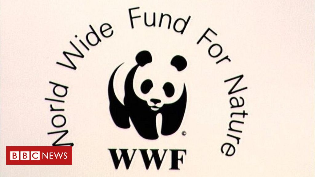 WWF vows to 'do more' after human rights abuse reports