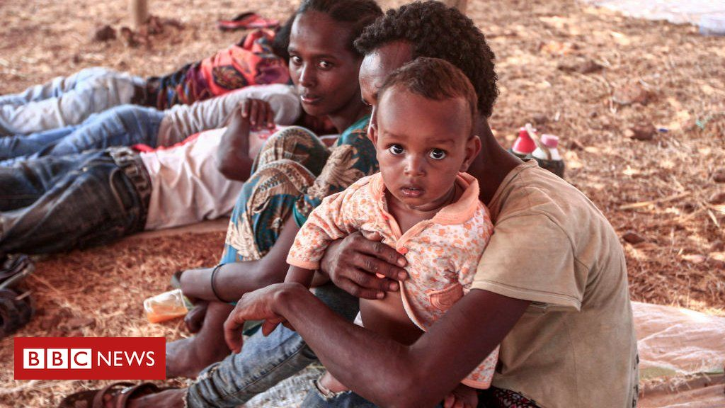 Ethiopia Tigray crisis: Government forces 'march on capital'