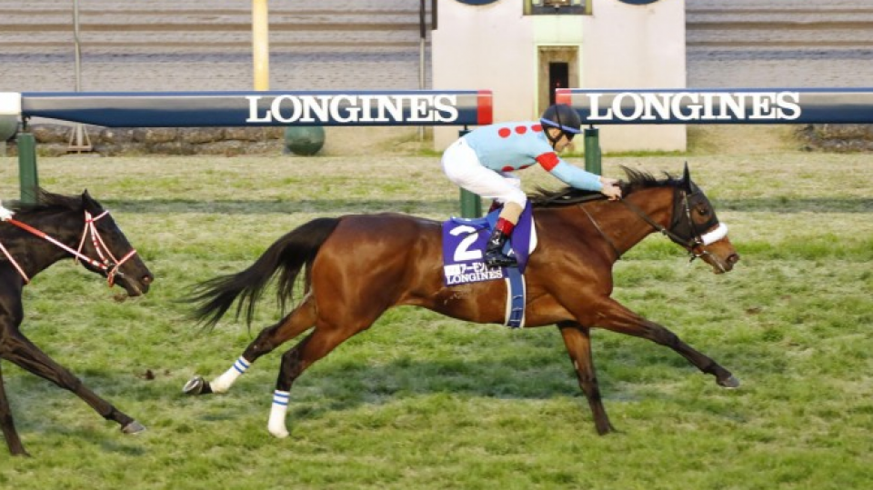 Almond Eye goes into retirement as Japan Cup champ