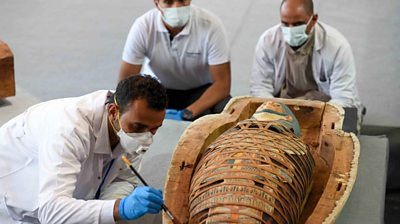 Egypt: More than 100 intact sarcophagi unearthed near Cairo
