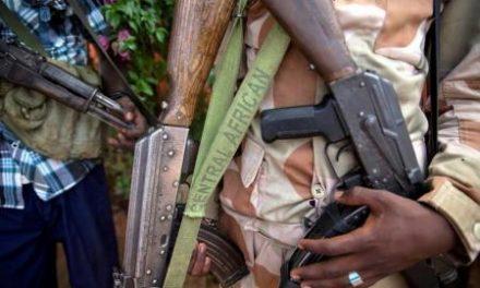 Central Africa Republic: Rebel push 'under control'