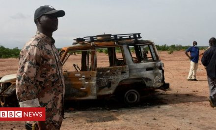 Suspected Islamists kill 'at least 56 people' in Niger attacks