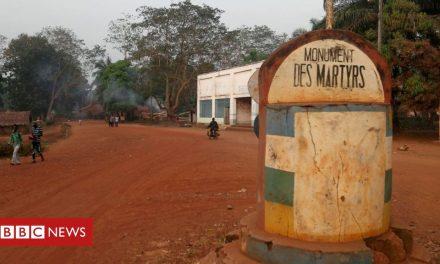 Central African Republic rebels seize Bangassou, says UN