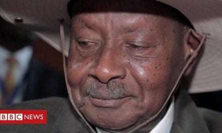 Uganda social media row raises question over regulation in Africa