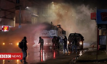Tunisia protests: Hundreds arrested as clashes continue