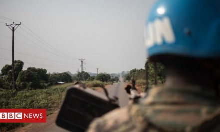 Central African Republic's capital in 'apocalyptic situation' as rebels close in