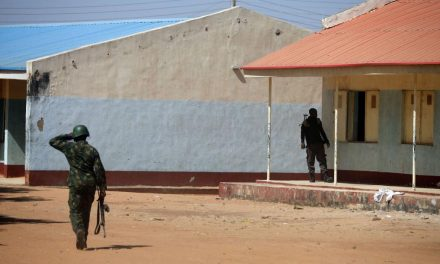 Nigeria: Kidnapped schoolboys freed, says state official