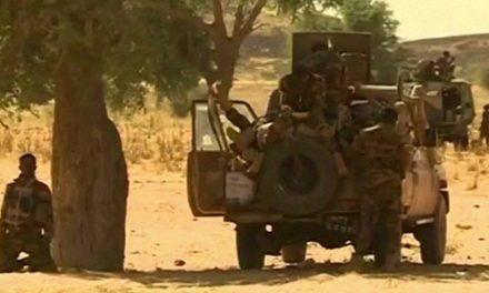Niger: Death toll from jihadist attacks rises to 100