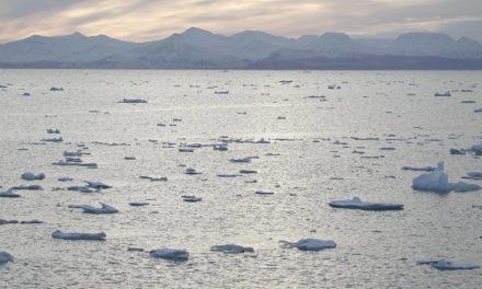 Norway eyes sea change in deep dive for metals instead of oil
