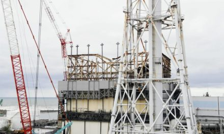 High court denies government responsibility for Fukushima nuclear crisis