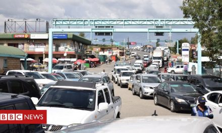 Covid-19: South Africa to reopen border crossings