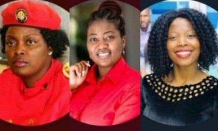 Zimbabwe: 3 female political activists arrested for insulting police