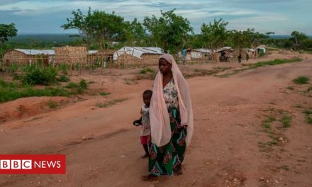 Mozambique insurgency: Militants beheading children, aid agency reports