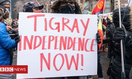 Tigray conflict: The fake UN diplomat and other misleading stories