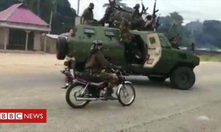 Mozambique: Dozens dead after militant assault on Palma
