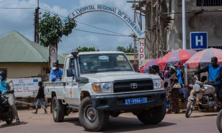 Scientists probe whether West Africa's recent Ebola outbreak was from man who survived epidemic five years ago