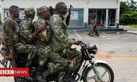 Mozambique Palma attack: Why IS involvement is exaggerated