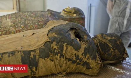 'Pregnant Egyptian mummy' revealed by scientists