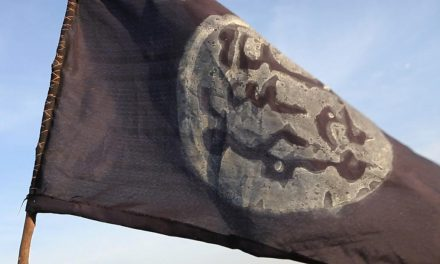 Boko Haram fighters have hoisted flag and forcefully acquired wives in Nigerian town, governor says