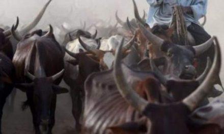 Fulani herdsmen shot in fresh attacks on them in Ghana