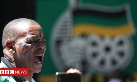 South Africa: ANC in power struggle over corruption allegations
