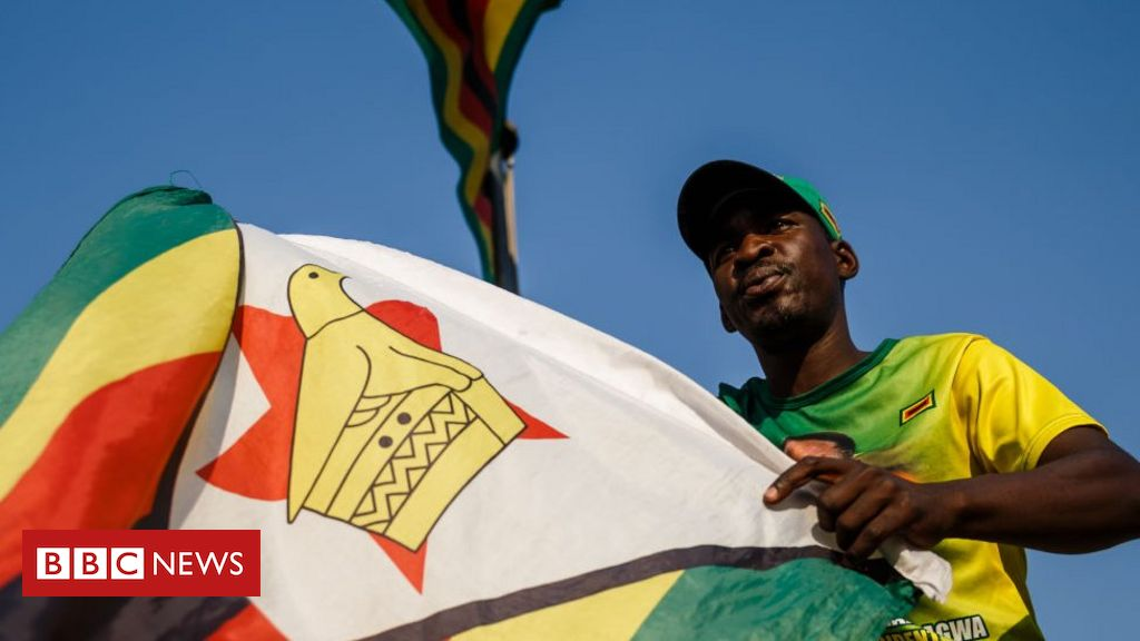 The Zimbabwe bill that could outlaw 'unpatriotic acts'