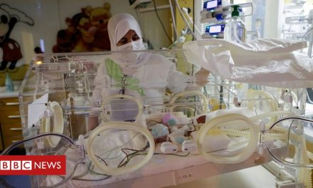 Malian mother's nonuplets face months in incubators, says clinic