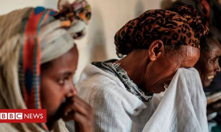 Ethiopia Tigray crisis: Warnings of genocide and famine