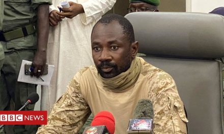 Mali names coup leader Col Assimi Goïta as transitional president