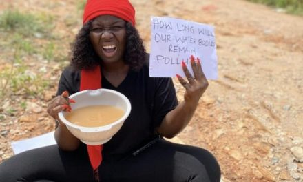 Ghanaians hold anti-government online protests