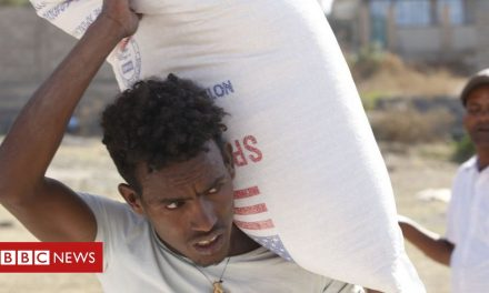 Ethiopia's Tigray crisis: G7 calls for access for aid workers
