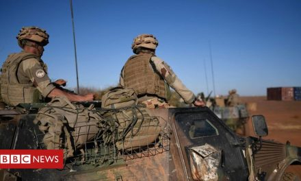 France suspends military ties with Mali over coup