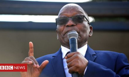 Jacob Zuma: South African court to hear ex-president's jailing appeal