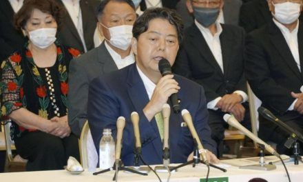 Former education minister Yoshimasa Hayashi vows to switch to Lower House