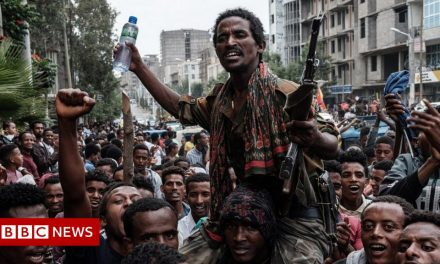 Ethiopia PM Abiy Ahmed calls on civilians to join Tigray war