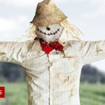 Kenya's CBC education reform: How scarecrows are terrifying parents
