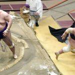 Meisei stuns Terunofuji as yokozuna suffers second loss