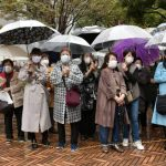 In Japan, spreading falsehoods during elections is not new. Misleading voters online is.